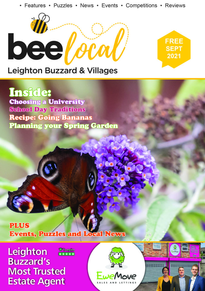 Bee Local Magazine front cover featuring a vibrant red admiral on a mauve buddleia bush